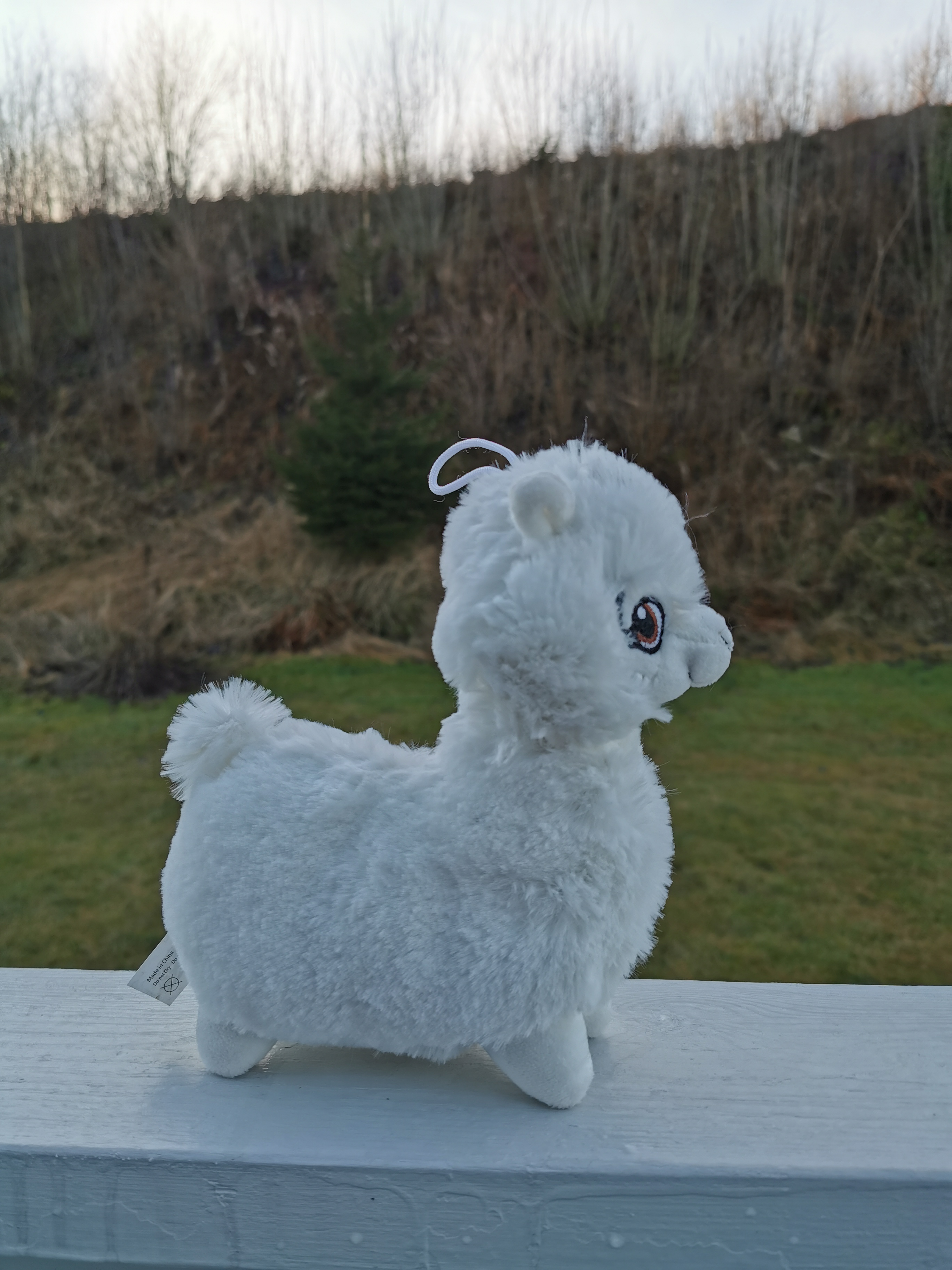 Alpakkabamse hvit