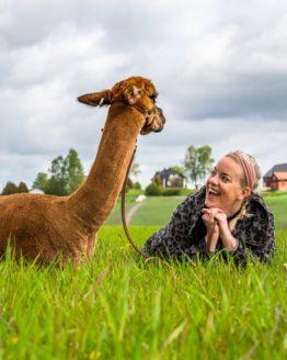 Alpakkavandring med Joey og Synne - Fotograf Kjell-Jostein Sivertsen